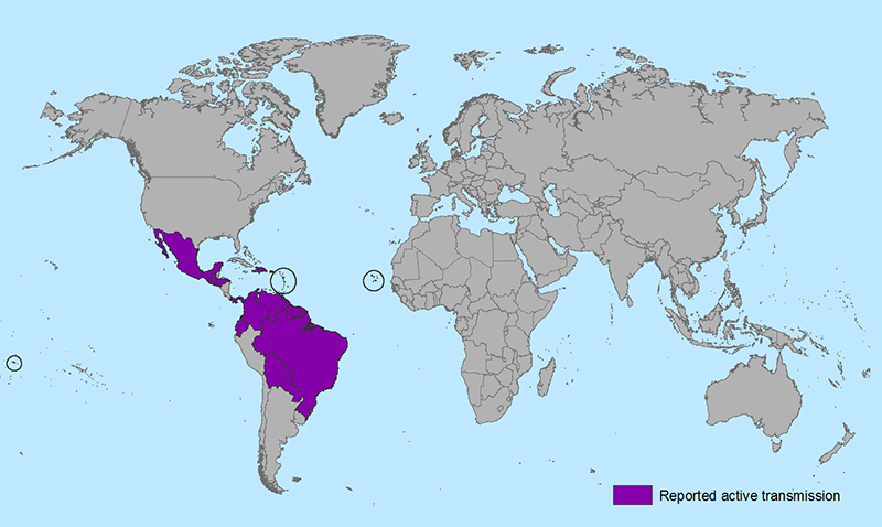 Countries that have past or current evidence of Zika virus transmission, as of January 26, 2016.