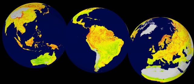 A global snapshot of the Vegetation Sensitivity Index (VSI) from 2016. The VSI measures environmental sensitivity to a changing climate, using satellite data gathered between 2000-2013 at 5km resolution. Areas in green are covered in vegetation that is the least sensitive to changes. Areas in red show the highest sensitivity. Grey areas are barren land or ice covered. Water is blue.