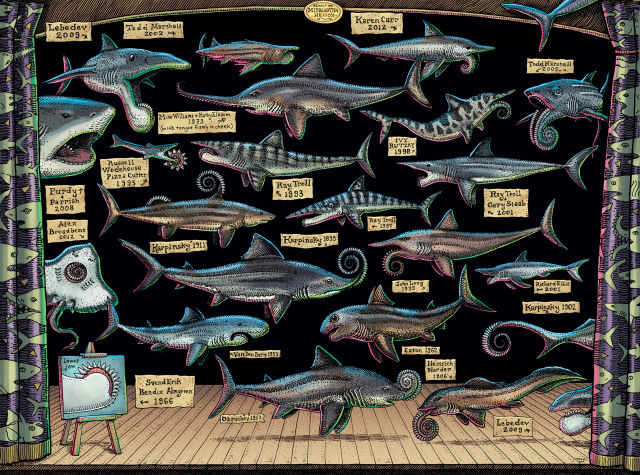All the different ways that scientists have tried to explain where Helicoprion's spiral teeth were positioned.