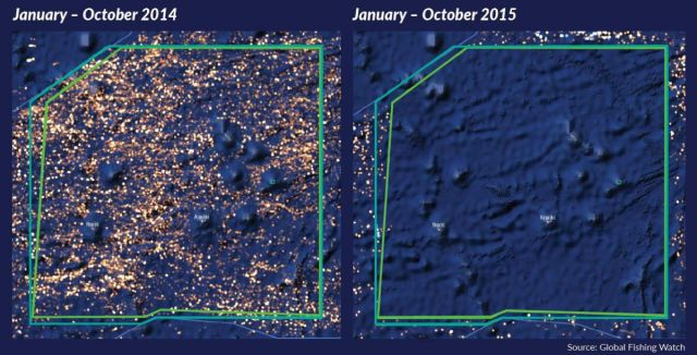 Global Fishing Watch claims success in big data approach to fighting illegal catches