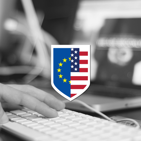 EU-US Privacy Shield may not pass muster, according to leaked extract