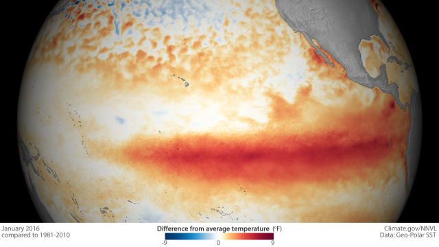 Current El Niño's strength due partly to an earlier fizzle