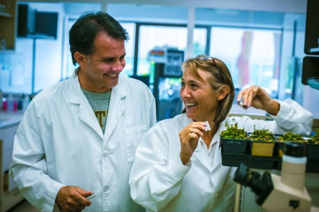 Hope Jahren and Bill Hagopian in their lab, where they created many one-of-a-kind instruments to study plants and the deep geological history of Earth's atmosphere.