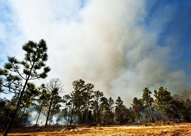 As wildfire season ramps up, nearby drones are becoming a problem again