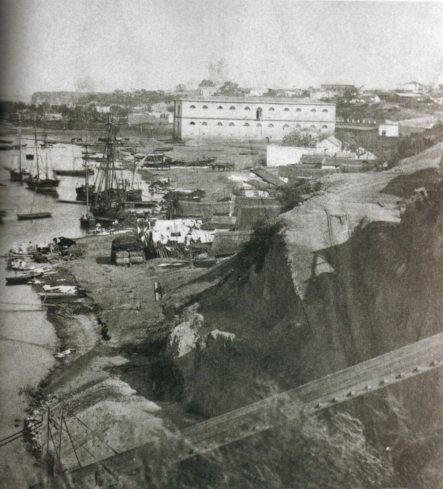 Puerto Rosario in 1868, when Argentine ants probably started getting on board and finding their way into the world. Genetic analysis reveals that most Argentine ants in the world can trace their lineage back to ants living near this port.
