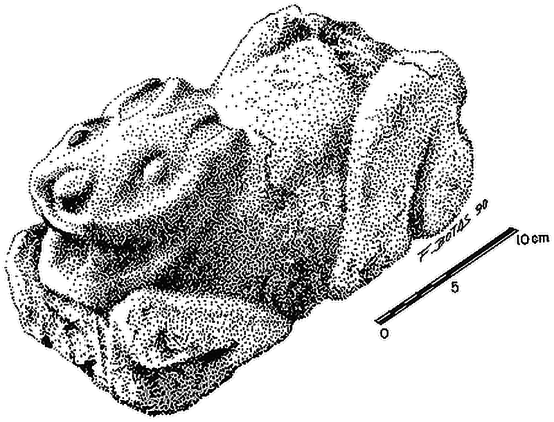 This small sculpture of a rabbit was found in the early 1990s at the bunny apartment complex in the Oztoyahualco neighborhood of Teotihuacan. It is likely over 1,500 years old.