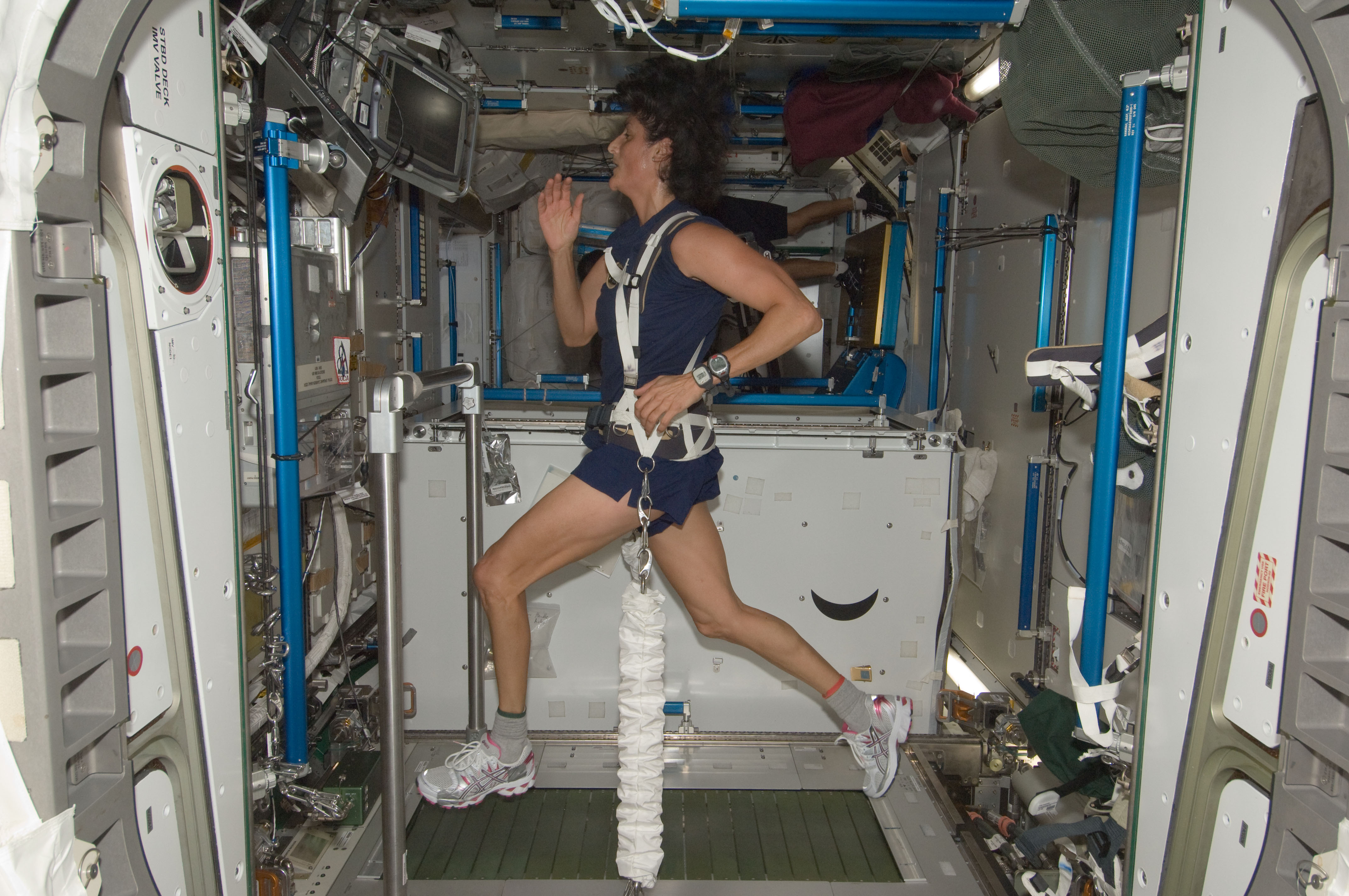 """Astronaut Sunita """"Sunny"""" Williams exercises aboard the ISS with the <a href=""""https://en.wikipedia.org/wiki/Treadmill_with_Vibration_Isolation_Stabilization"""">T2 treadmill</a>. (Sad spoiler: even though the treadmill is """"officially"""" named COLBERT, no one actually calls it that. It's just plain ol' """"T2."""")"""