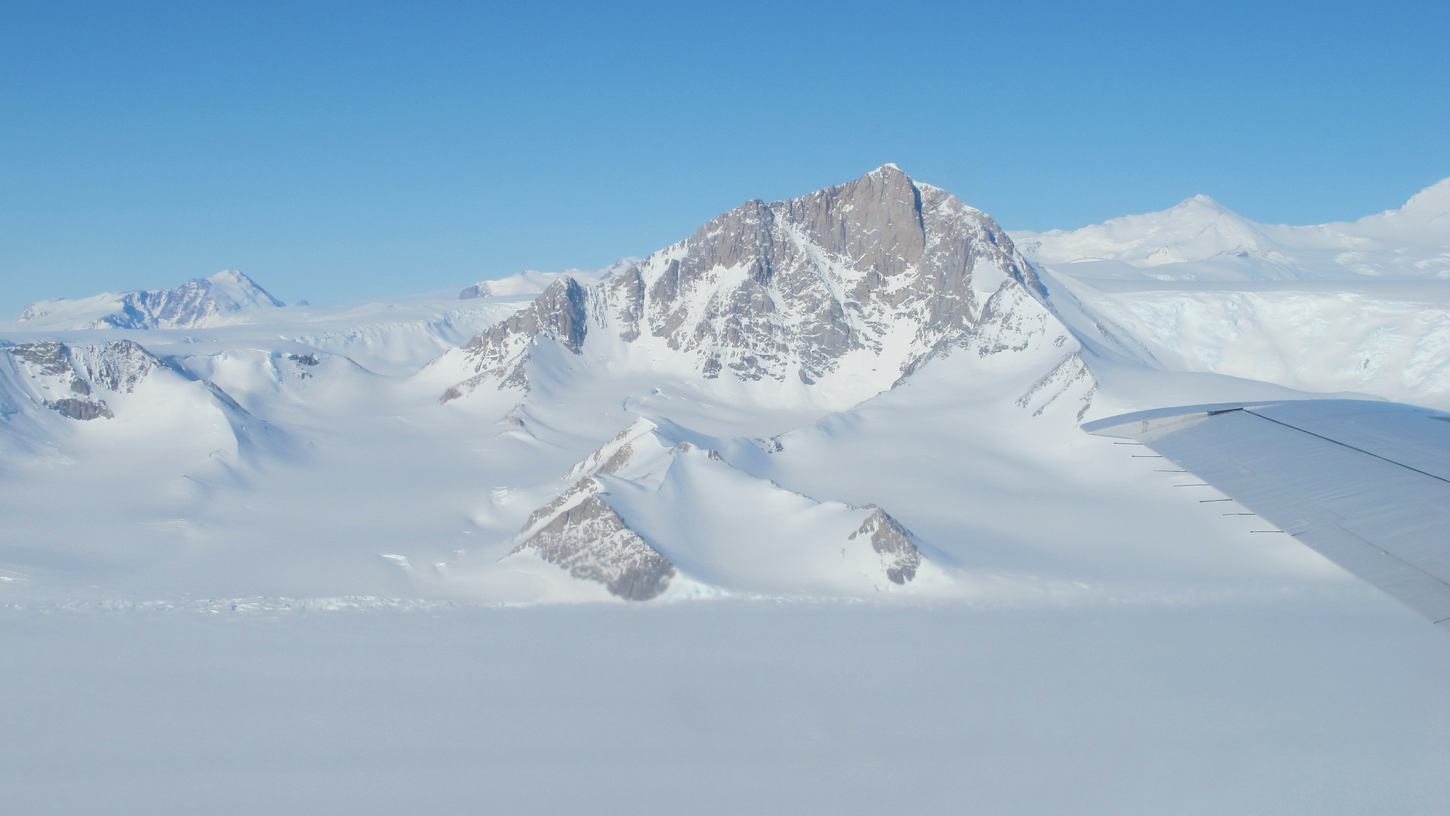 how did plankton end up on top of antarctica�s mountains