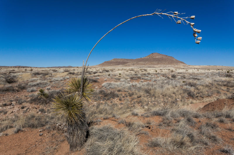 Decade-long droughts may be in US Southwest's near future