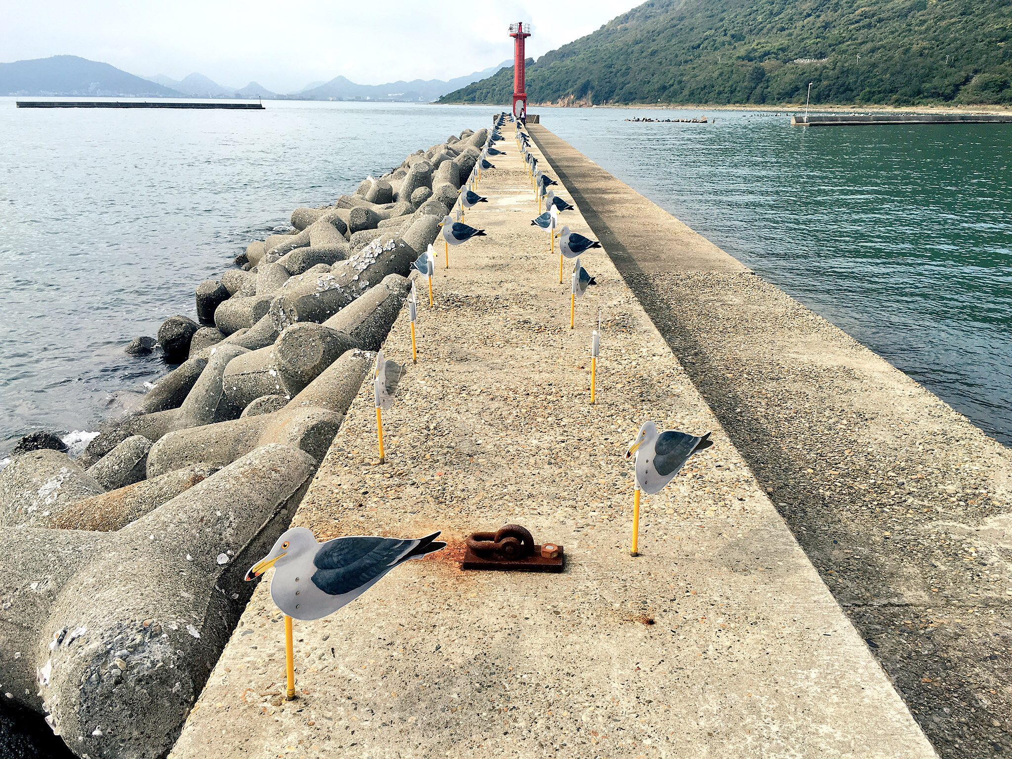 Covering Coasts With Concrete Japan Looks To Tetrapods To Battle