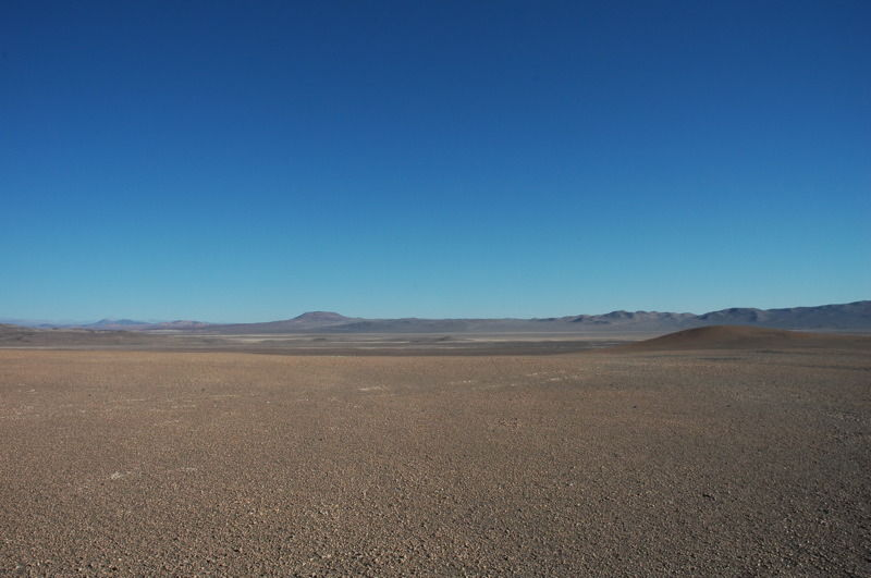 The Atacama Desert today is barren, its sands encrusted with salt. And yet there were thriving human settlements there 12,000 years ago.