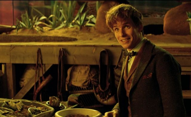 Newt in his laboratory, inside the vast realm of animal habitats he's got hidden inside his suitcase.