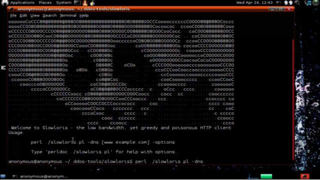 The Slowloris tool running in a terminal.