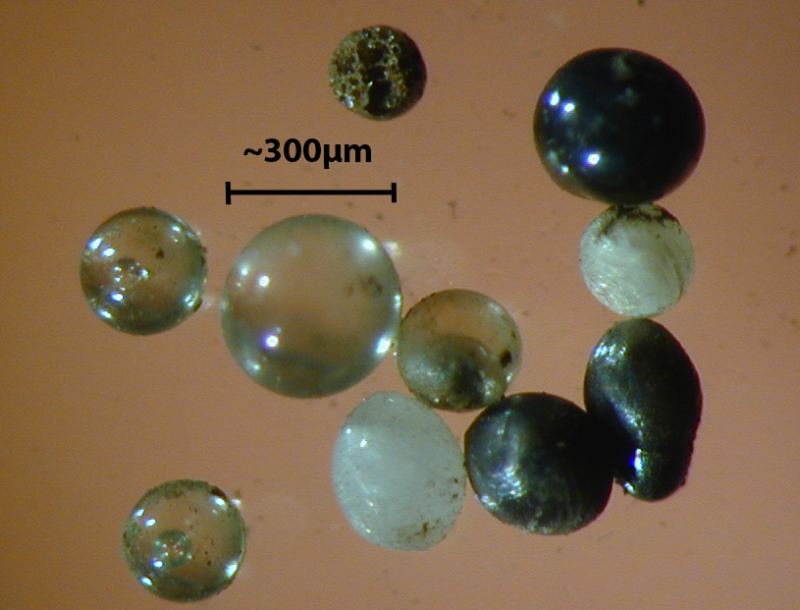 A microscope image of some micrometeorites.