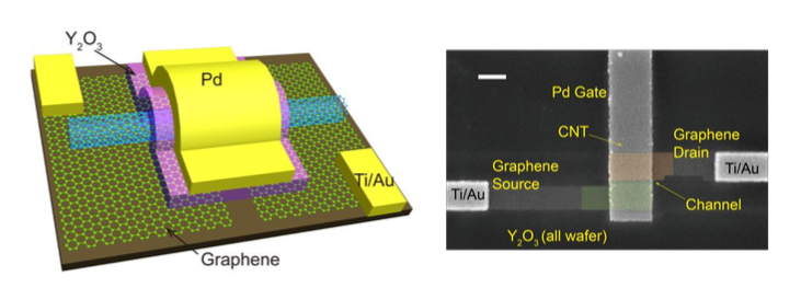 A diagram of the transistors built in this paper, next to a false-colored image of the actual hardware.