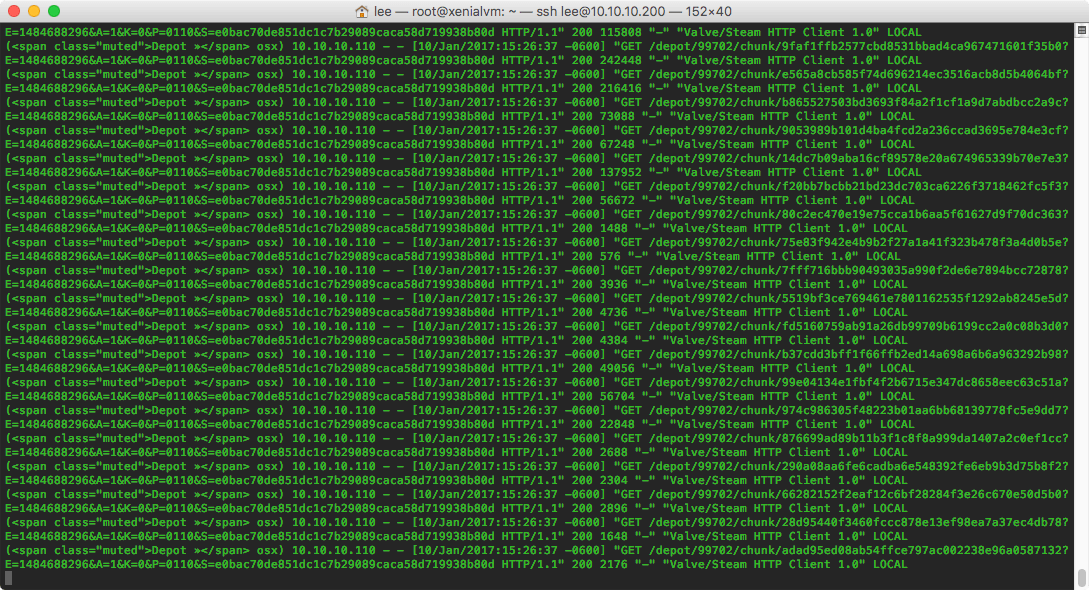 Go, little cache server, go!
