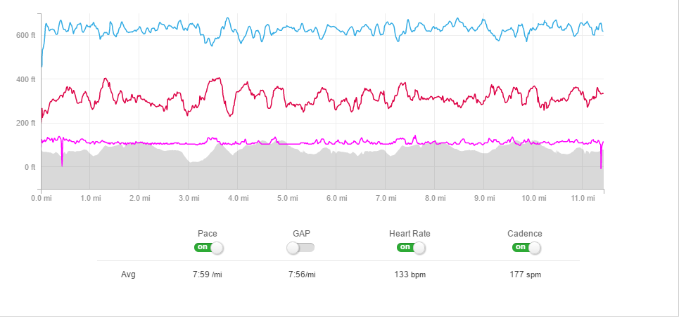 One of many running-data images that an investigator looked into in order to bust Seo's phony run time.