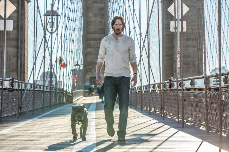 Don't ever mess with John Wick's dog.