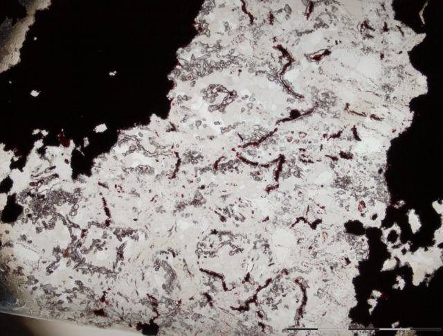 The reddish lines are the hematite filaments interpreted as remnants of iron-oxidizing bacteria.