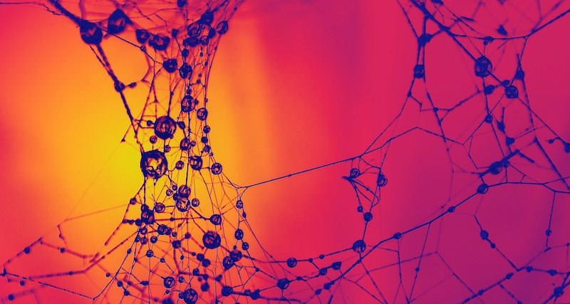 Plastic synapses offer hardware alternative to neural