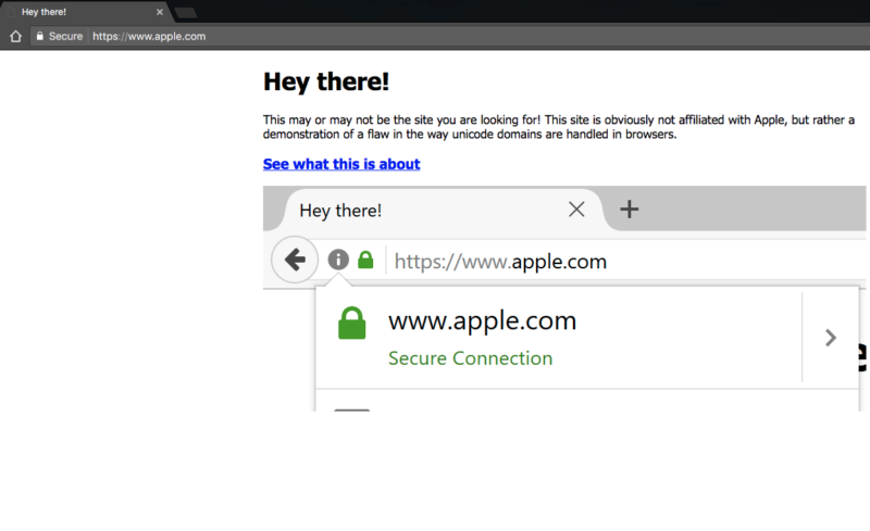 This is how a Chrome 57 displays https://www.xn--80ak6aa92e.com/. Note the https://www.apple.com in the address bar.