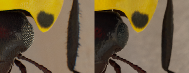 The left-hand ladybug has enhanced textures, models, and rendering to make full use of the Scorpio GPU. The right-hand ladybug is representative of an Xbox One engine scaled to 4K. Notice how poor the eye looks and that the legs are hairless.