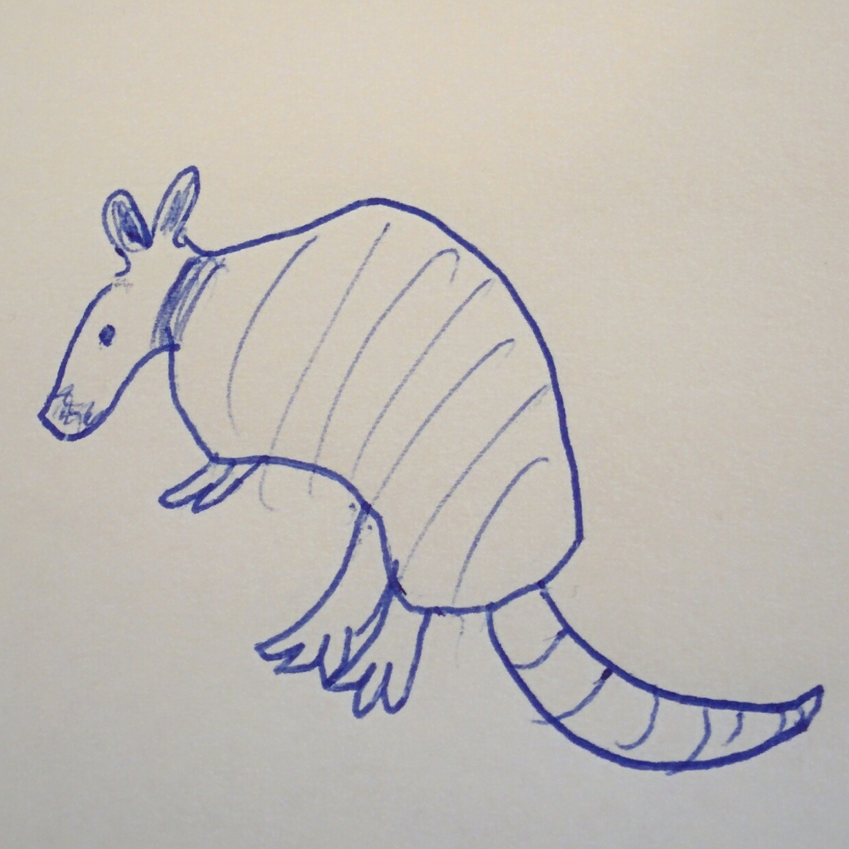 The official Armadillo logo, clearly done by one of Google's top artists.