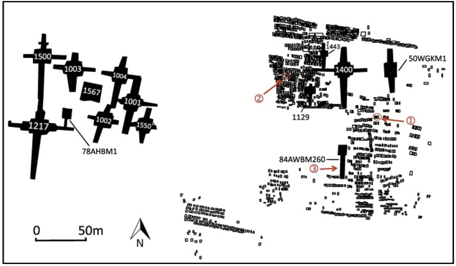 Map of the royal cemetery showing locations of royal tombs and sacrificial ground. Solid black enclosures are royal tombs, and open rectangles are sacrificial pits. Red markers show locations of three sets of samples analyzed in this study.