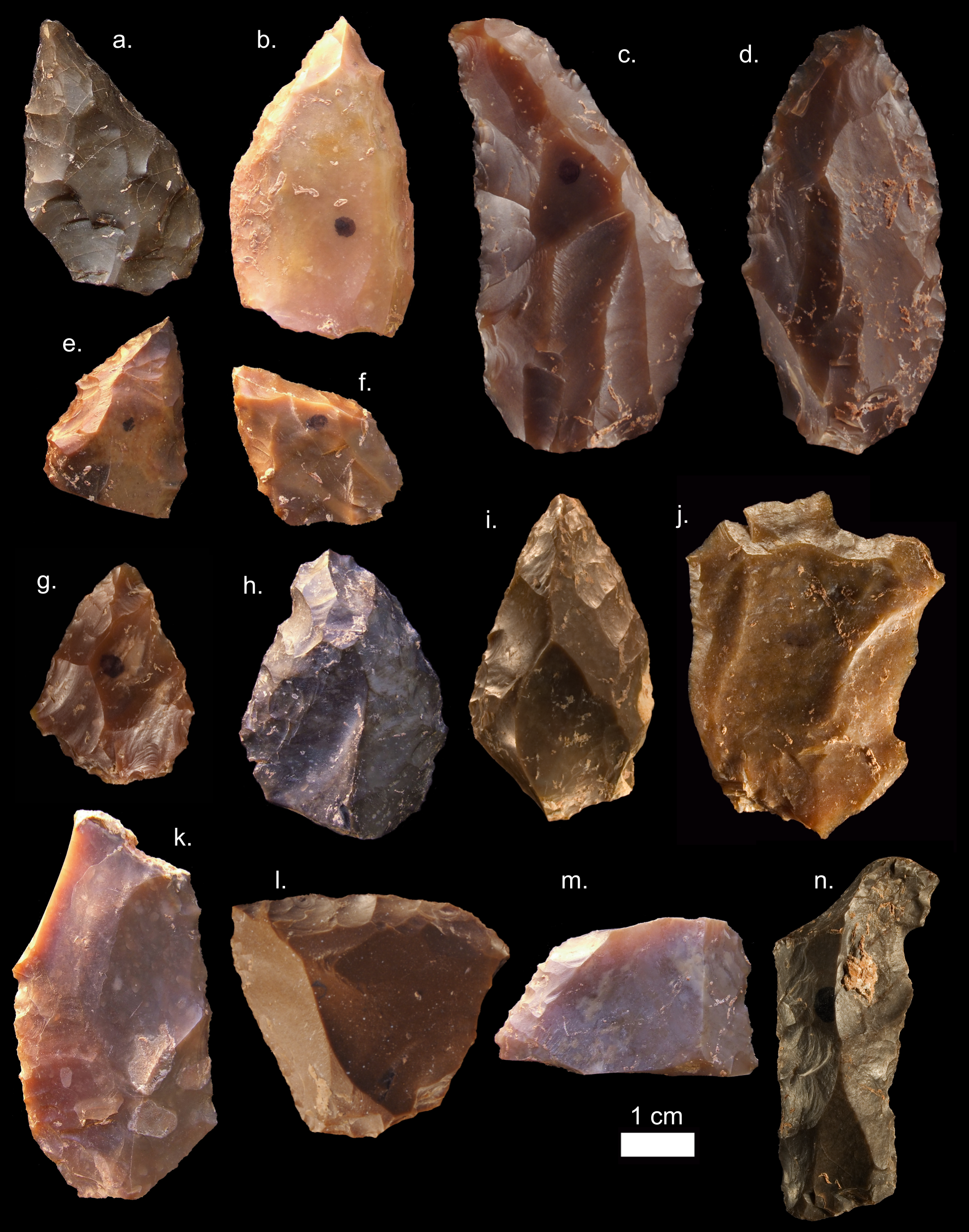 stone tools A group of artefacts of different size, shape and material  what are aboriginal flaked stone tools flaked stone tools were made by hitting a piece of stone, called a.