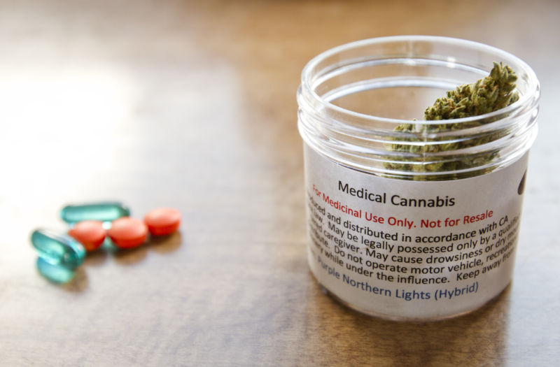 Survey: Pain patients overwhelmingly prefer medical marijuana over opioids