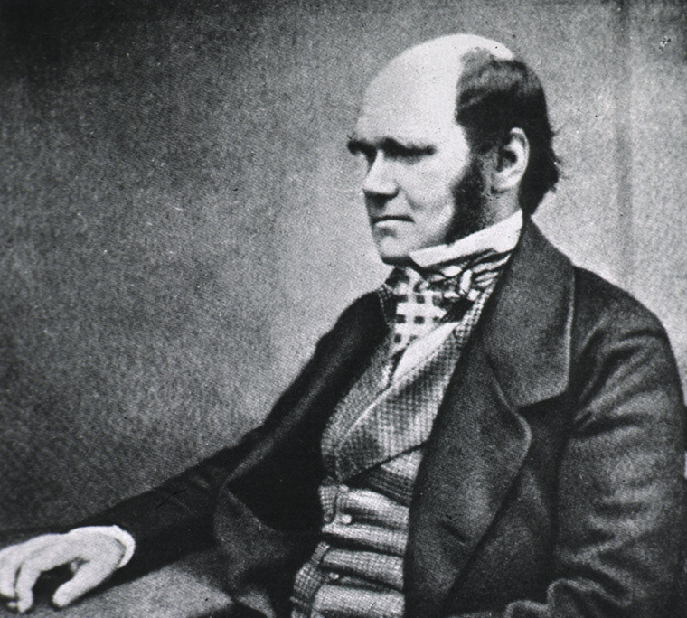 A young Charles Darwin, before evolution had caused any public controversy.