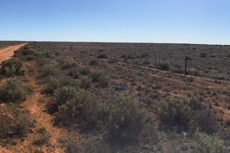 This is what the Aurora site, located 30km north of Port Augusta, looks like currently.