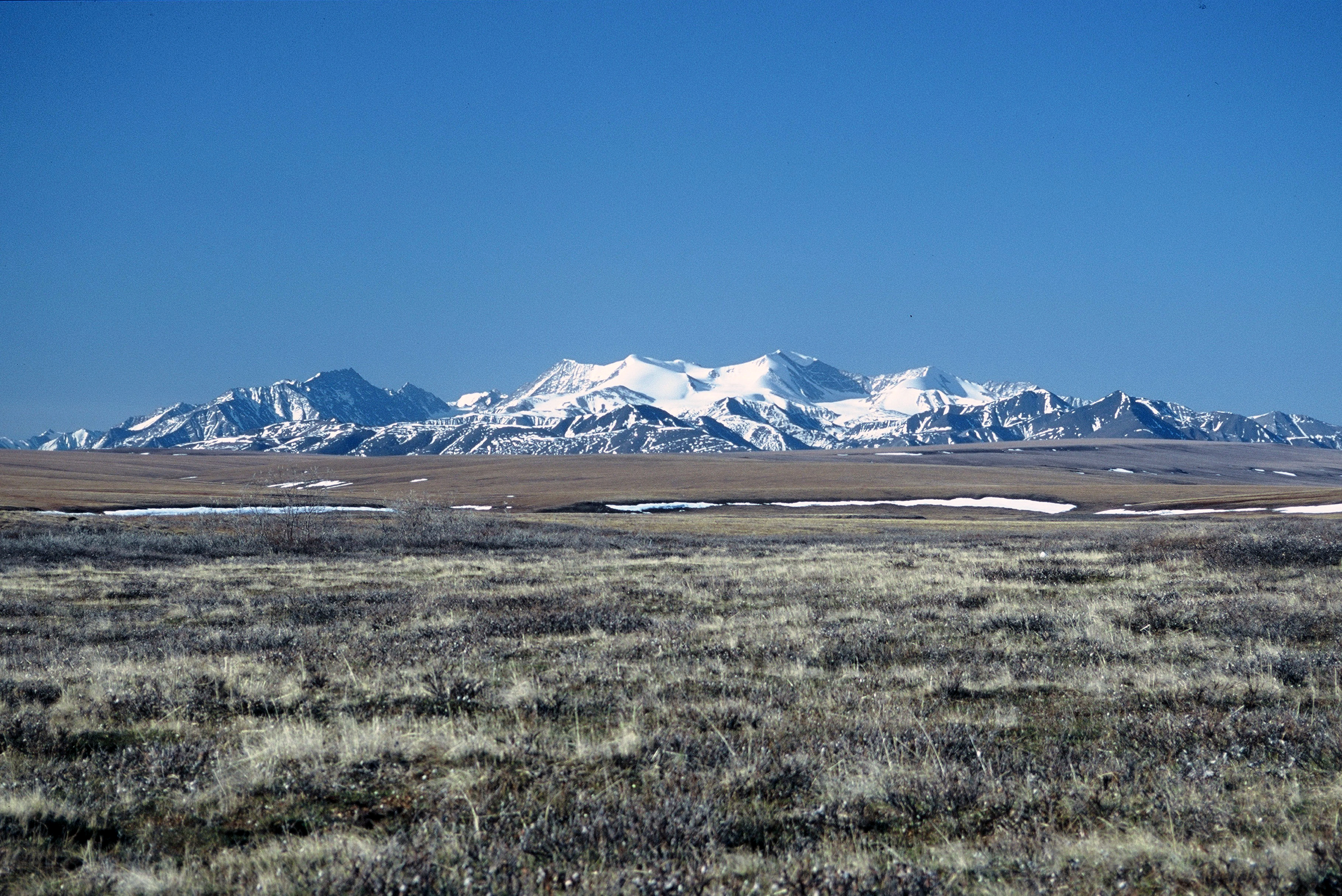 oil drilling in alaska wilderness Another climate change bomb: interior secretary zinke signs alaskan oil-drilling order kristen miller of the alaska wilderness league told the associated press that zinke's order upsets a management plan that the interior department spent years creating with tribes.