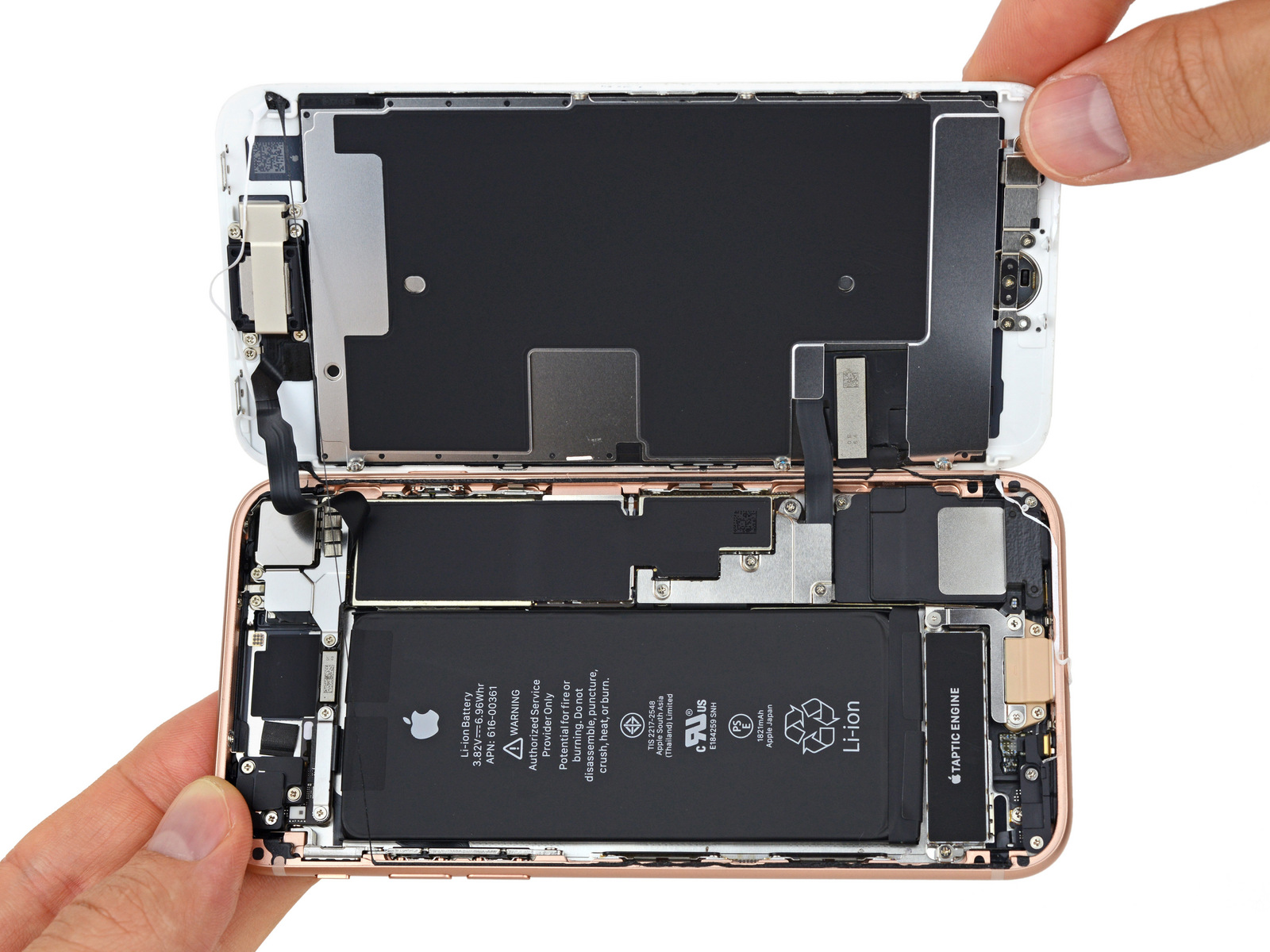 Ifixit s iphone 8 teardown finds a smaller battery and for Antenne interieur