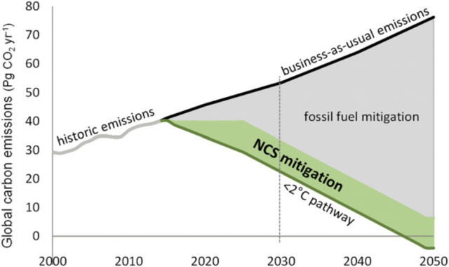Major emissions cuts are required to limit global warming to 2 °C. The green portion of this wedge shows the cuts that could be provided by cost-effective land-use changes assuming a price of $100 per ton of carbon dioxide emissions.