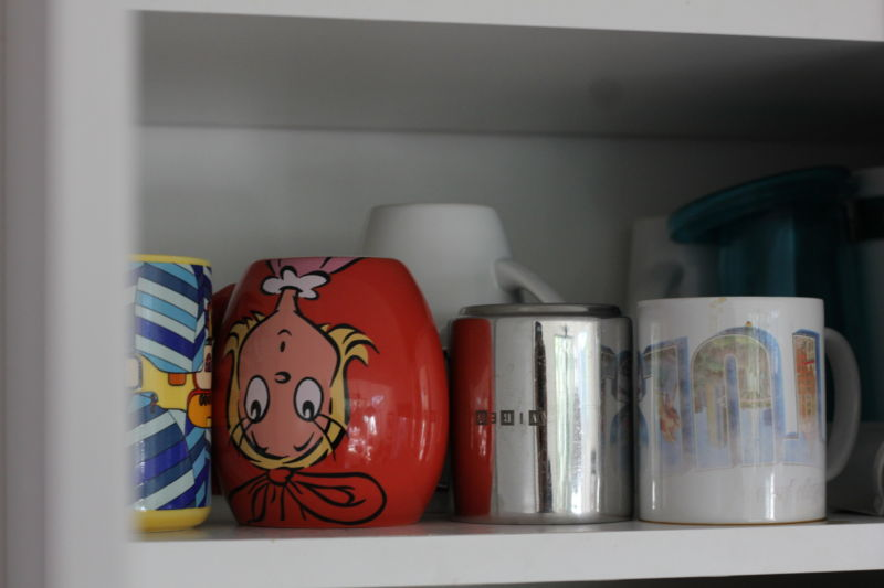 Everyone's cabinets/cupboards basically look like this, right?