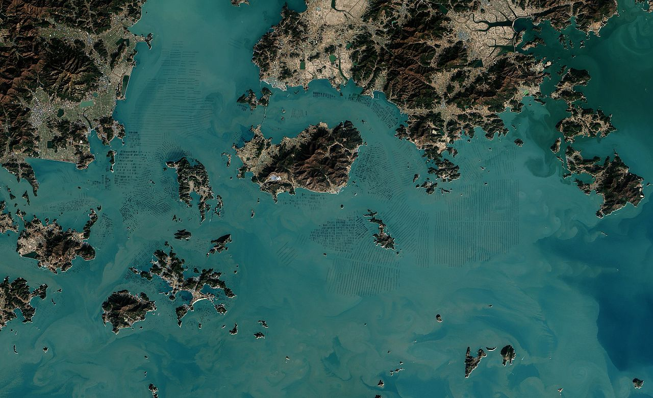 A satellite photo shows seaweed farms off the coast of South Korea.