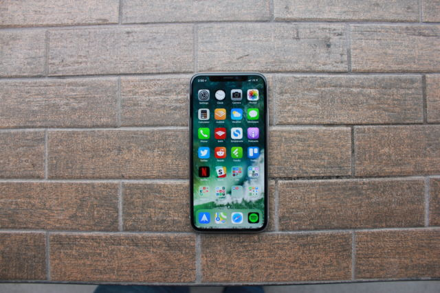 The iPhone X's display, with rounded edges and the sensor housing—also called the notch.