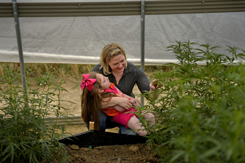 COLORADO SPRINGS, CO. - August 05, 2014: Janea Cox director of the Flowering H.O.P.E. Foundation, with her daughter Haleigh, who was diagnosed with Lennox-Gastaut syndrome, looks at the plants that make Haleigh's Hope, a cannabis oil high in cannabidiol, or CBD, that is helping  control her seizures.