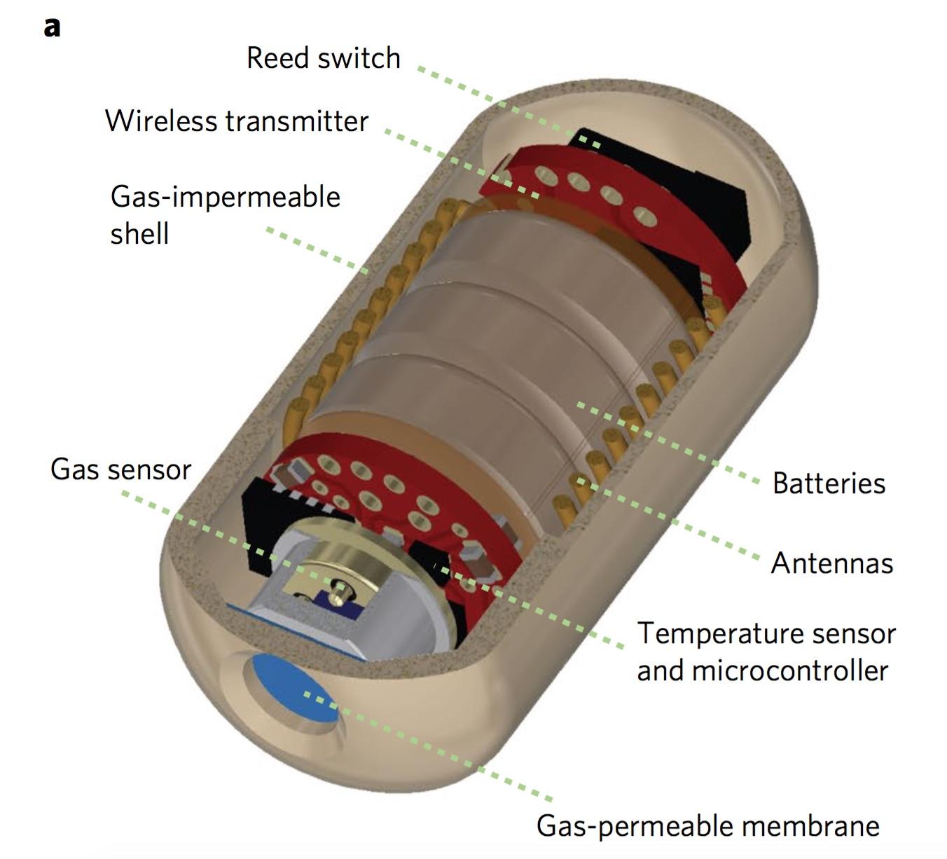 pill-diagram.jpg