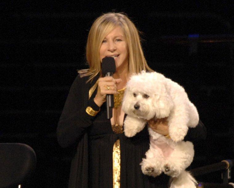 Barbra Streisand and her original dog Sammie (Samantha) in 2006.