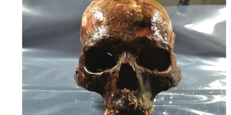 8 000-year-old heads on spikes found in Swedish lake