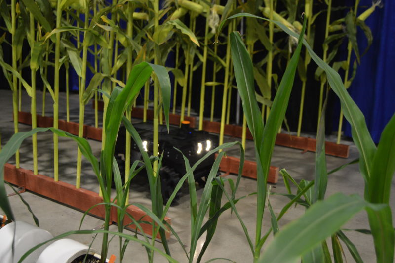 A crop monitoring robot: Like a Roomba, but with more sensors and responsibility.