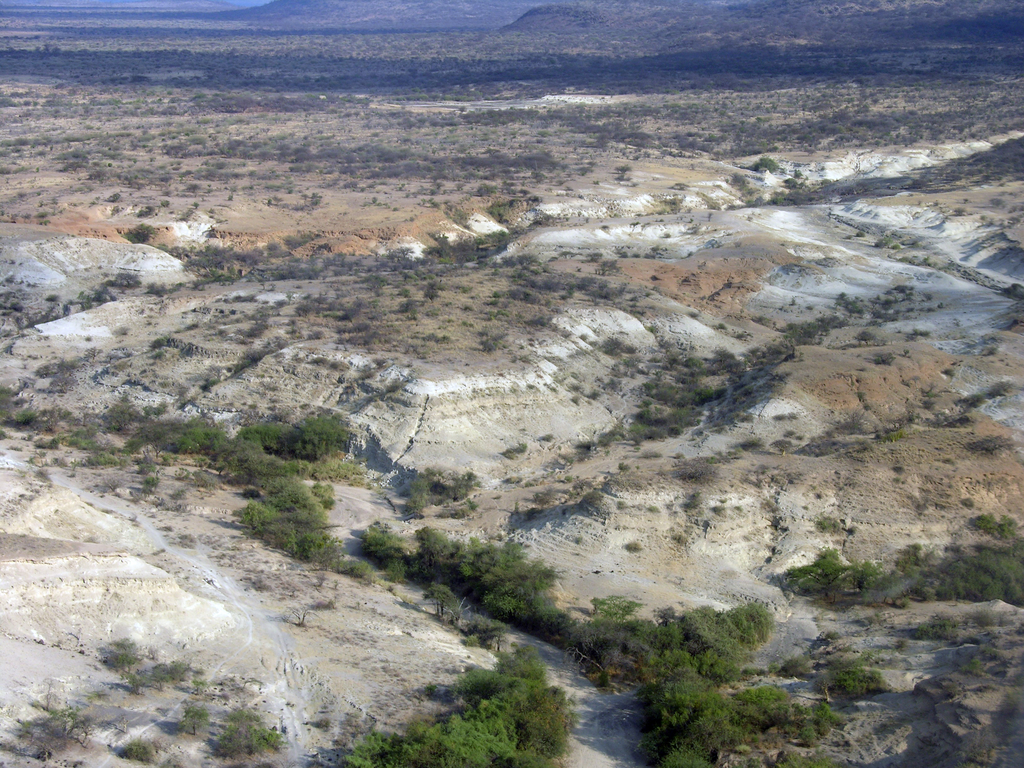 Aerial view of the Olorgesailie Basin.