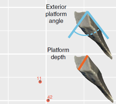 Diagram of exterior platform angle and platform depth.