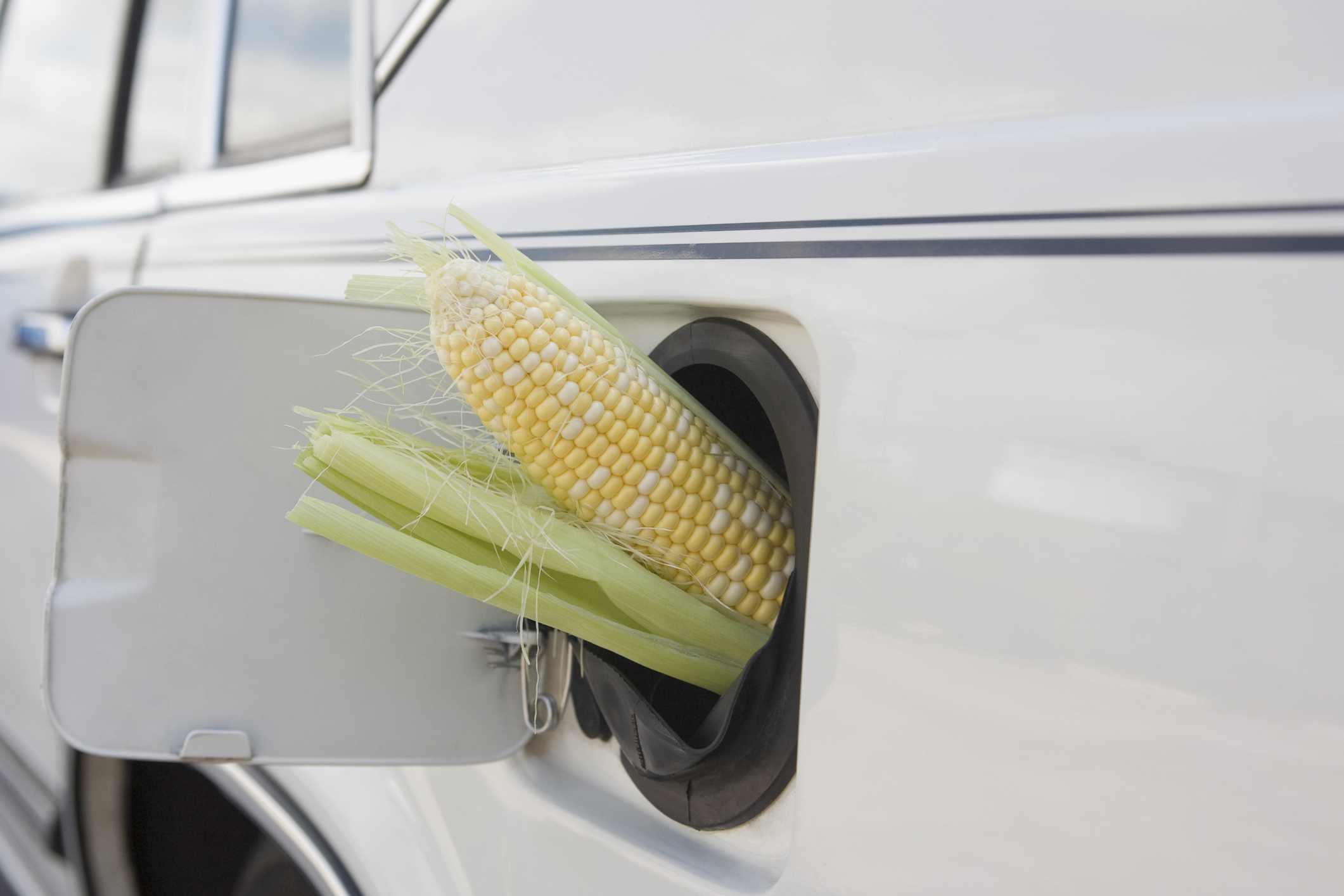 "We see what you did here, Getty. ""Corn cob in car gas tank filler."""