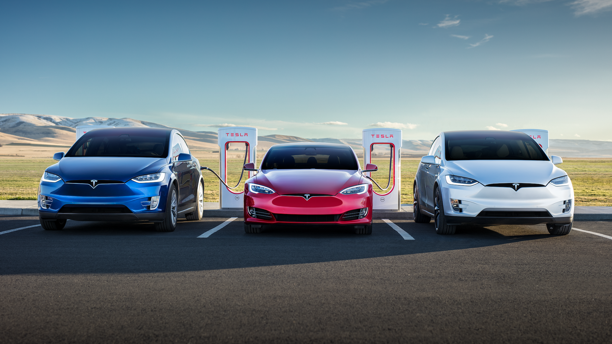 months of bad news has battered tesla's image with customers, poll