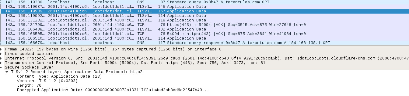 A capture of a DNS transaction over DoH. HTTPS, TLS. That's all there is; there isn't any more.