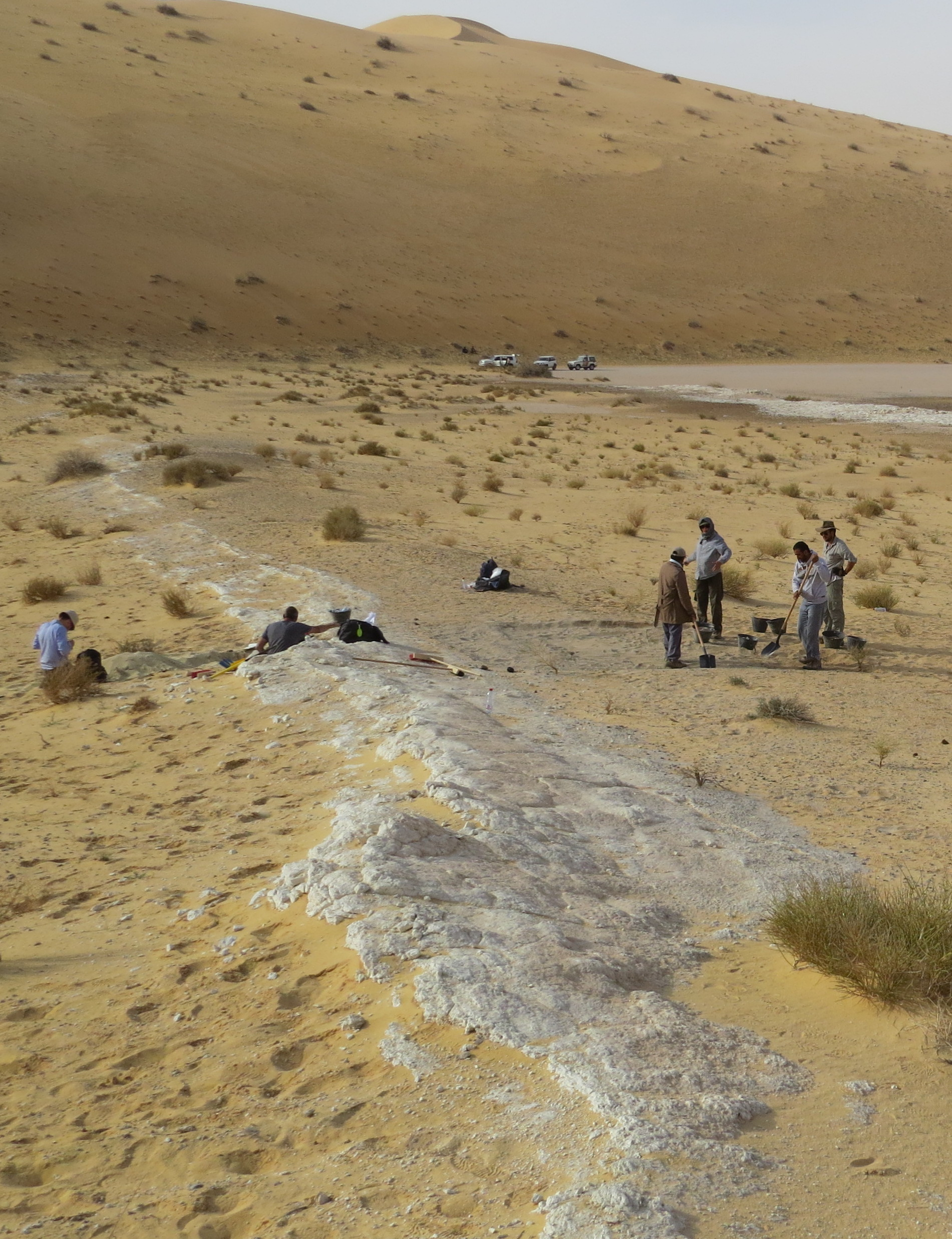 The Al-Wusta Site looked much more hospitable 87,000 years ago.