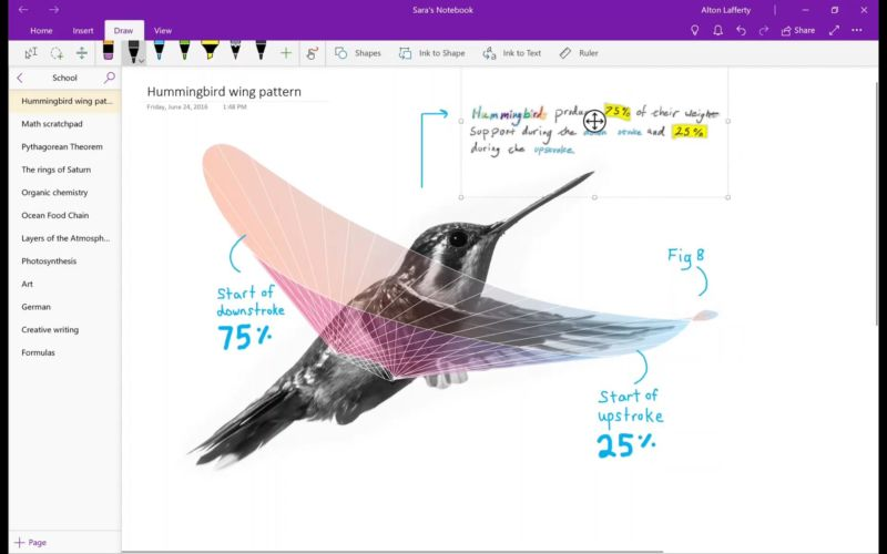 Microsoft drops OneNote from Office, pushes users to Windows 10 version